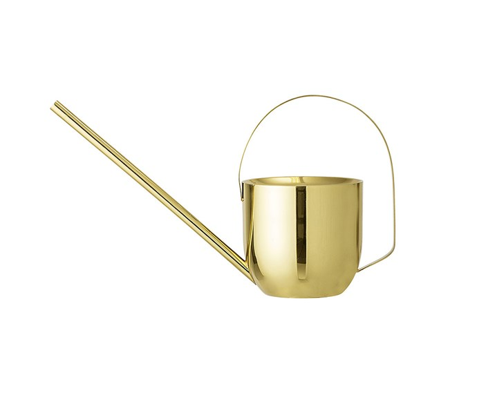 "Bloomingville Gold Watering Can, $103 at [Amara](https://www.amara.com/au/products/metal-watering-can-gold?utm_source=google&utm_medium=cpc&amss=91w&pdg=kwd-507991838798:cmp-1052340400:adg-54948023689:crv-252697570312:pos-1o3:pid-150158&gclid=CjwKCAiAuMTfBRAcEiwAV4SDkYQZ-ijPofM1NWDDrQWnOf2YFOMsT58UA67nMCyjafM0zKUQnHa-ZRoCpaQQAvD_BwE|target=""_blank""
