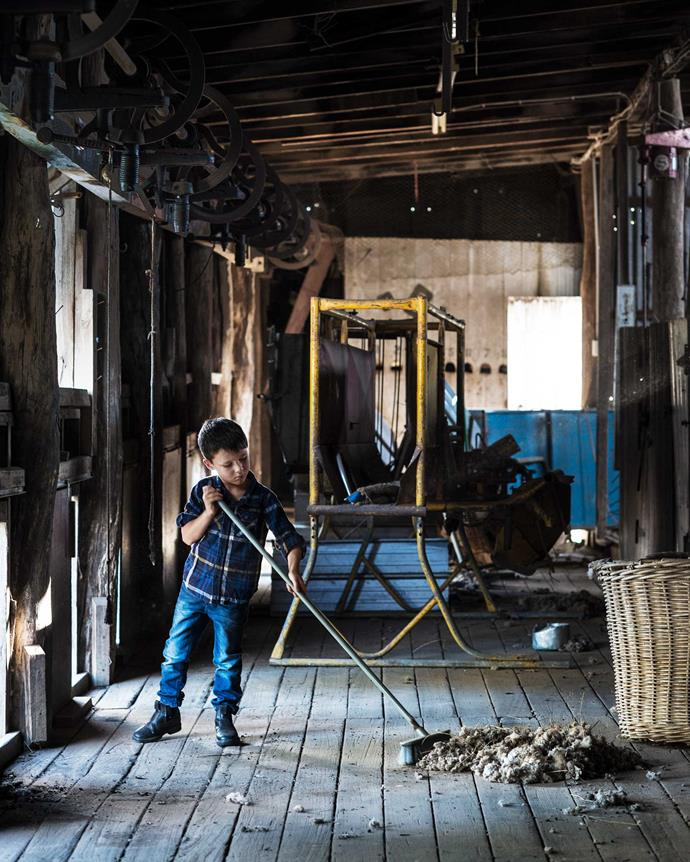 Jack gives a hand in the shearing shed, mostly unused now that the farm runs mainly cattle.   *Photography: Brigid Arnott*