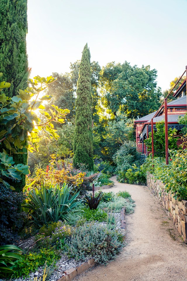 """**ACCESSIBLE GARDEN**<P> <P>Kate Herd's riverside garden 7km from Melbourne's CBD is many things: lush, sprawling (it's over 2.4 hectares) and abloom with an eclectic mix of [native and exotic plants](https://www.homestolove.com.au/native-exotic-plant-garden-19420 target=""""_blank""""). But in addition to these things, it also happens to be accessible. Dry-stone walls and granitic-sand paths designed for wheelchair access wind down the hill to the billabong below.<P> <p>*Photo: Simon Griffiths / Story: Australian House & Garden*<p>"""