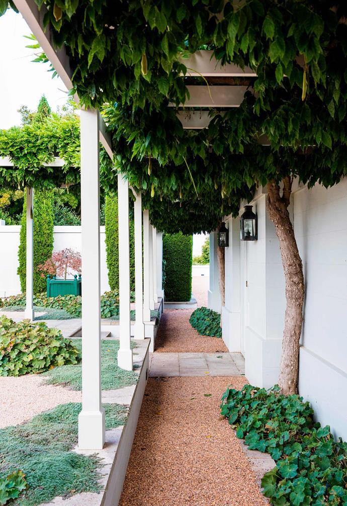 *Photography: Claire Takacs / bauersyndication.com.au*