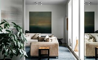 Living room with suede couch, blue rug and indoor plant
