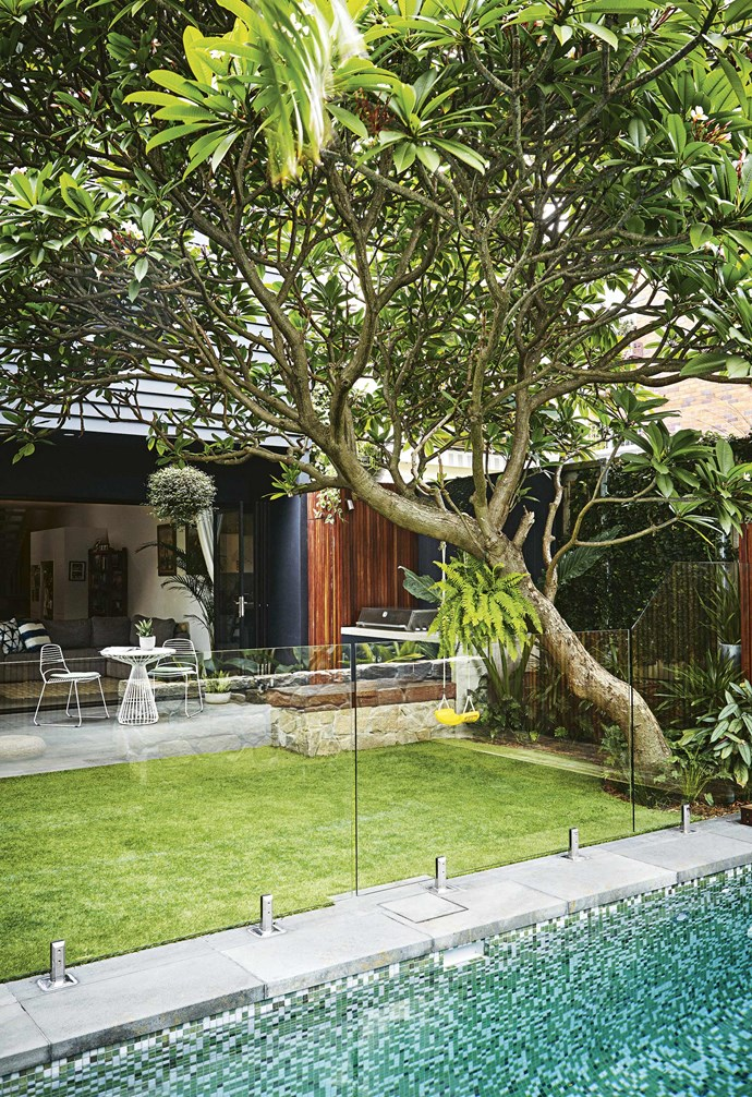 """Opting for low-maintenance sub-tropical plantings to match Lucy and Dave's busy lifestyle, Josh chose broad-leafed Lady palm (*Rhapis*), Elephant ear (*Alocasia*), *Philodendron 'Xanadu', Ctenanthe setosa* 'Grey Star' and *Lomandra longifolia* 'Tanika'. <br><br>Bordering one side of the garden against a spotted-gum fence is a bamboo hedge. """"The bamboo is growing really fast and has such a lovely foliage,"""" says Lucy. Further along the northern boundary, star jasmine climbs a wire trellis creating a sculptural and fragrant focal point before a dark paling fence coated in [Dulux](https://www.dulux.com.au/