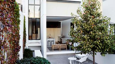 The clever renovation of a Sydney terrace house