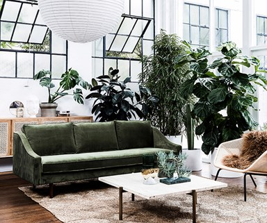 5 ways to be more eco-conscious in the home in 2019