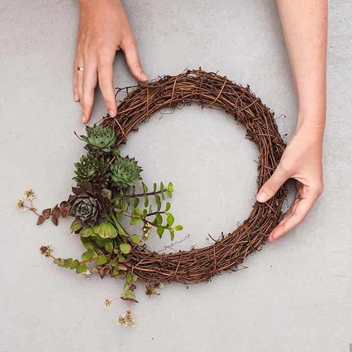 "'Succ a little' Succulent Wreath, $150, from [Little Succers](https://www.littlesuccers.com.au/products/succ-a-little-wreath|target=""_blank""