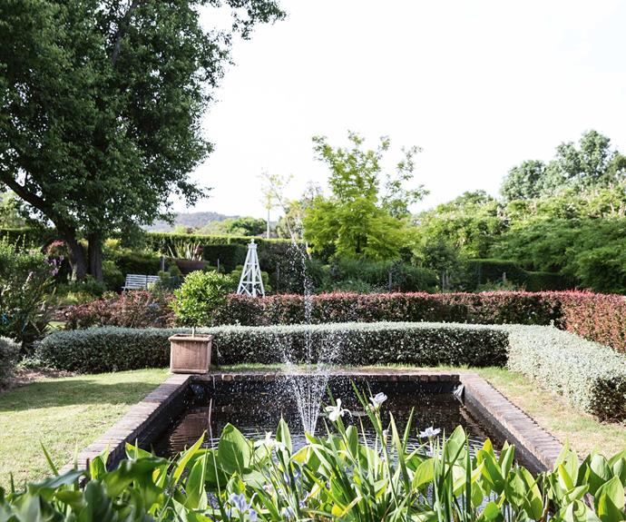 "The pond is an old concrete [swimming pool](https://www.homestolove.com.au/putting-in-a-swimming-pool-19152|target=""_blank"") surrounded by a double hedge of 'Teucrium' and 'Berberis', clipped at different heights for some structural dynamism."