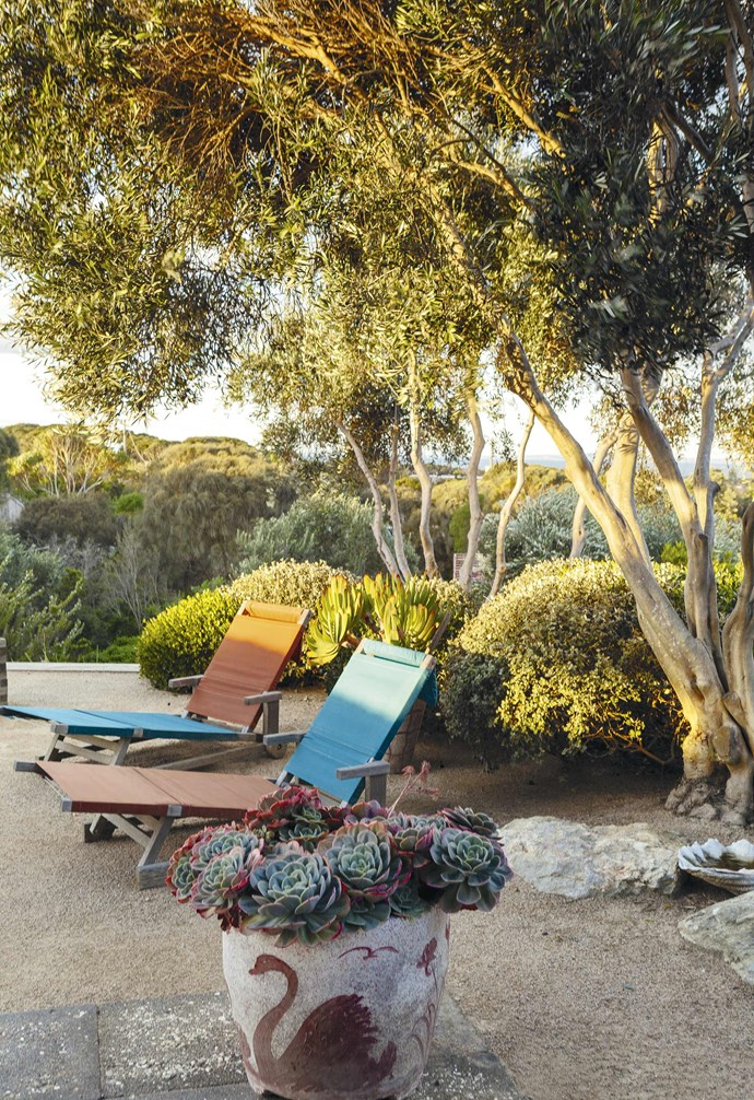 **Relax** The sculptural forms of the olive trees and their high canopies grant a clear view to the water, while a concrete garden pot from the 1960s houses tinted succulents.