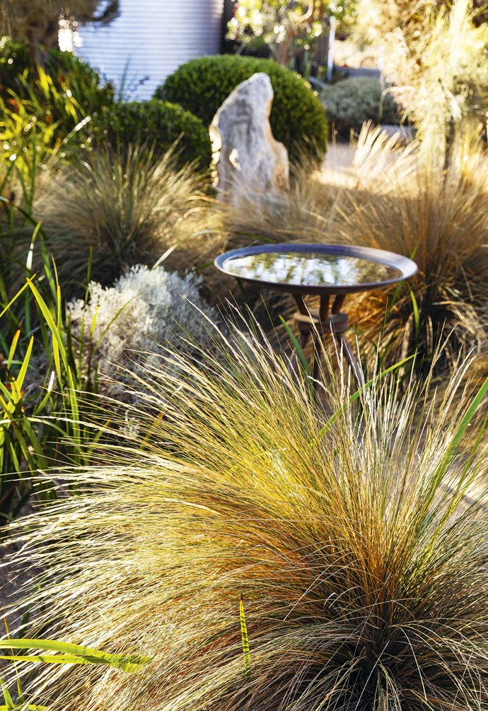 **Sanctuary** Copper water bowls placed throughout the garden attract birdlife.