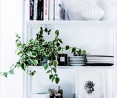 How to style a bookshelf beautifully