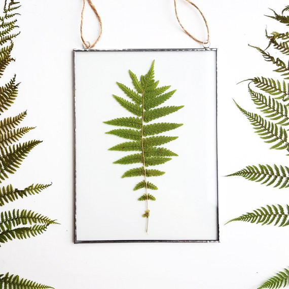 """**Pressed botanical artworks**: Pressed flowers were huge back in the Victorian era, and now, they're back! The great thing about this trend is that, if you're feeling crafty, you can easily do it yourself.   *Pressed fern **framed art**, $46.14, from [Julivani](https://fave.co/2GlLCRg