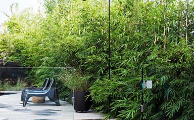 The best outdoor shower ideas to inspire you