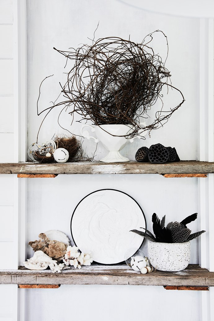 Lisa likes to display things found in nature rather than potted indoor plants.