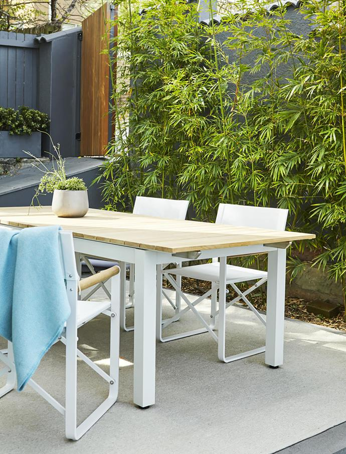 The dining zone is screened from neighbours by a row of slender weavers bamboo (Bambusa textilis 'Gracilis'), a fast-growing, upright plant that forms a lush, green wall.