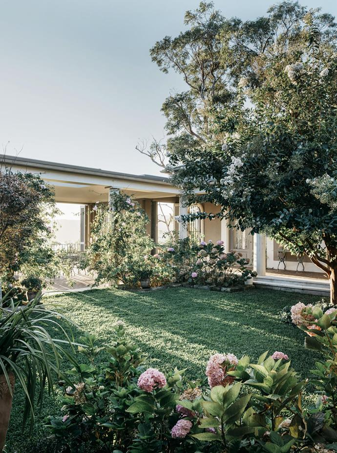 'Renae' climbing roses, hydrangeas, orchids and white crepe myrtle enhance the lawned central courtyard of this Walter Barda designed home. *Photograph*: Felix Forest. From *Belle* November 2018.