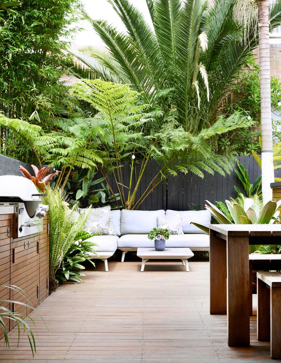 Palm trees and leafy bamboo provide shade for the lower lying plants in this courtyard garden.