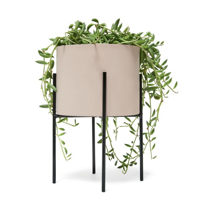 """Metal Pot with Stand, $7, [Kmart](https://www.kmart.com.au/product/metal-pot-with-stand/2382318