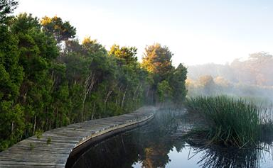 A garden with its own private lake on the Mornington Peninsula