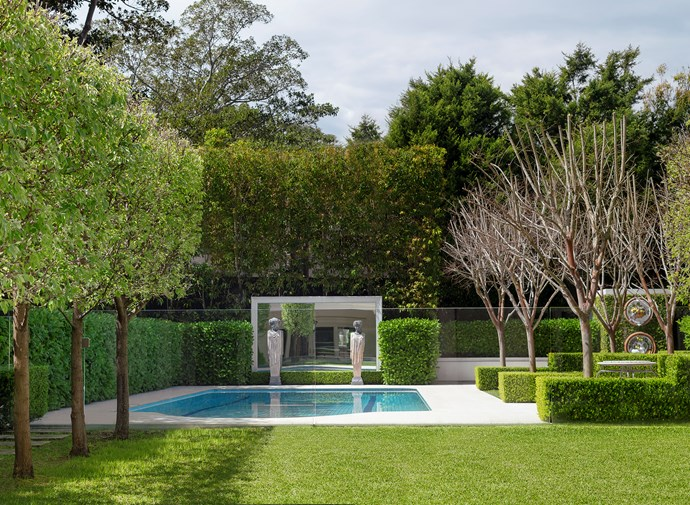 The pool fence in this Annie Wilkes designed garden is fenced off in clear glass to ensure a smooth visual flow. *Photograph*: Nicholas Watt. From *Belle* December/January 2018/19.