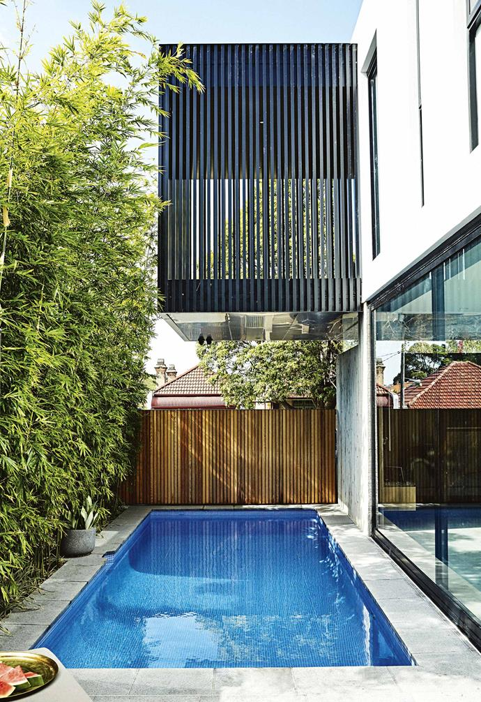 "On ground level and backed by a screen of Slender Weaver bamboo, [the pool](https://www.homestolove.com.au/15-of-the-best-backyard-pools-17823|target=""_blank"") fits sleekly along the side of the house. ""The pool was designed as a backdrop to the living space,"" says Ziad, ""and the bamboo blocks the view of the brick wall next door. We turn the lights on in the evening and the blue glow of the pool really extends the space of the living room. And because the bamboo reaches to the second storey, looking out from the bedroom, you see the bamboo, and hear it whispering in the wind."""