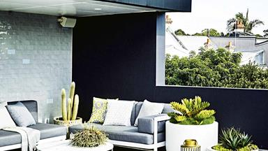 This modern rooftop terrace features a low-maintenance garden