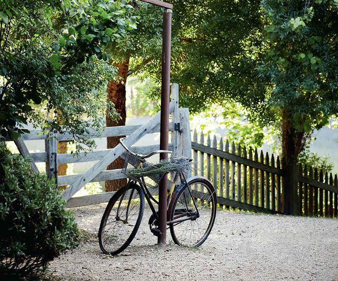 Bicycle leaning against a post at Lavandula Swiss Italian Farm