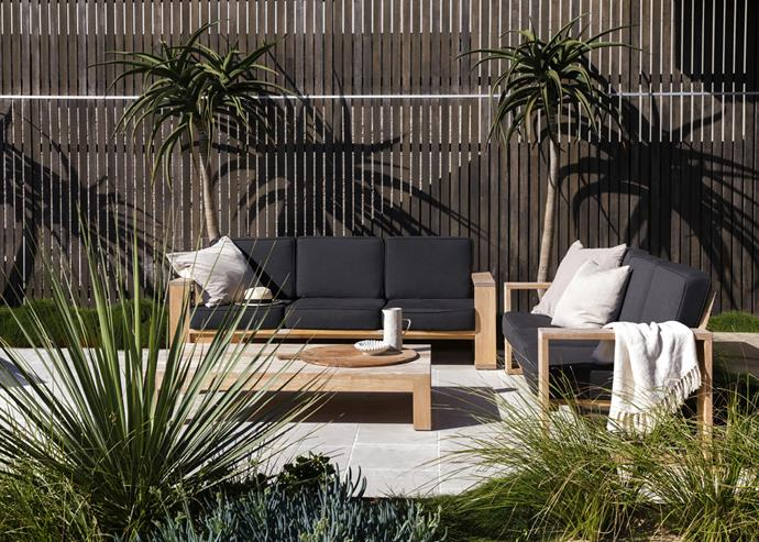 An outdoor lounge setting framed by tree aloes provides the perfect spot for weekend relaxation.
