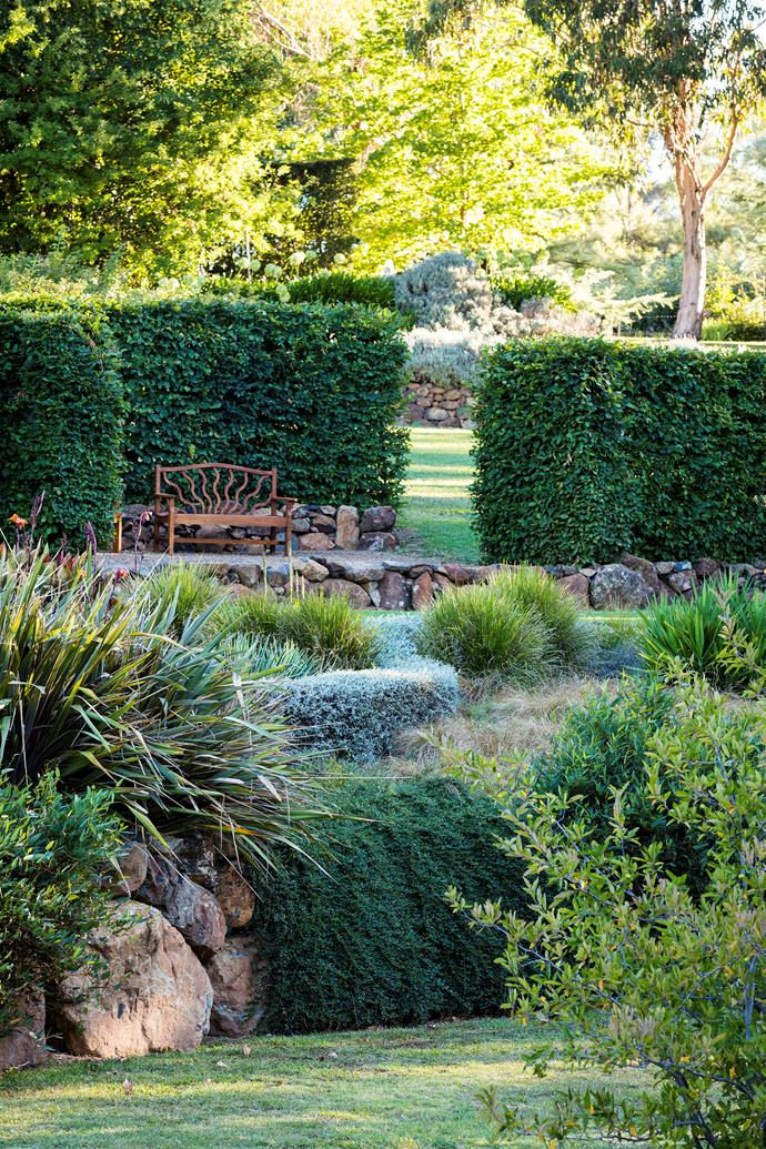 "A hornbeam hedge frames Dee's 'grass garden' of Carex, Lomandra and Miscanthus. The entire garden is designed with thoughtfully framed views of the landscape and, as Dee explains, ""quiet spaces where the eye and mind can rest""."