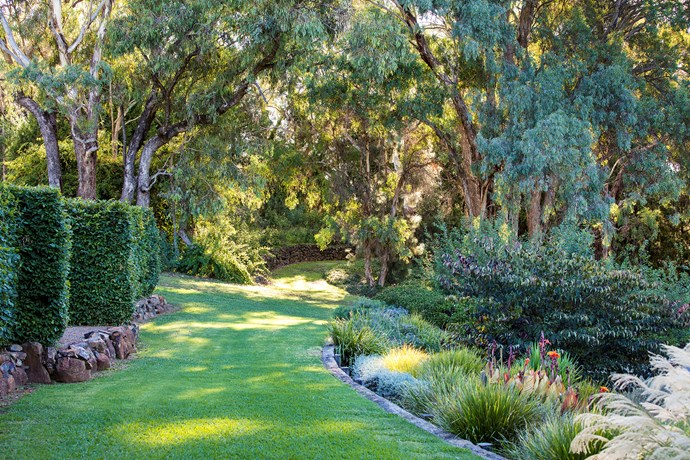 Century-old eucalyptus trees stand sentinel in the middle of the garden, where wide grass paths meander between thickly planted beds and hand-built Dry-stone walls.