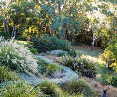 A spectacular garden in Orange, NSW