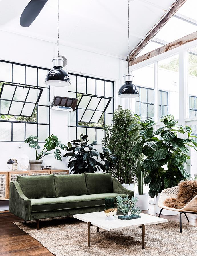 These steel-framed windows add industrial charm to this open-plan living area, and the industrial lights help tie the windows in with the rest of the decor. *Image: Maree Homer / bauersyndication.com.au*