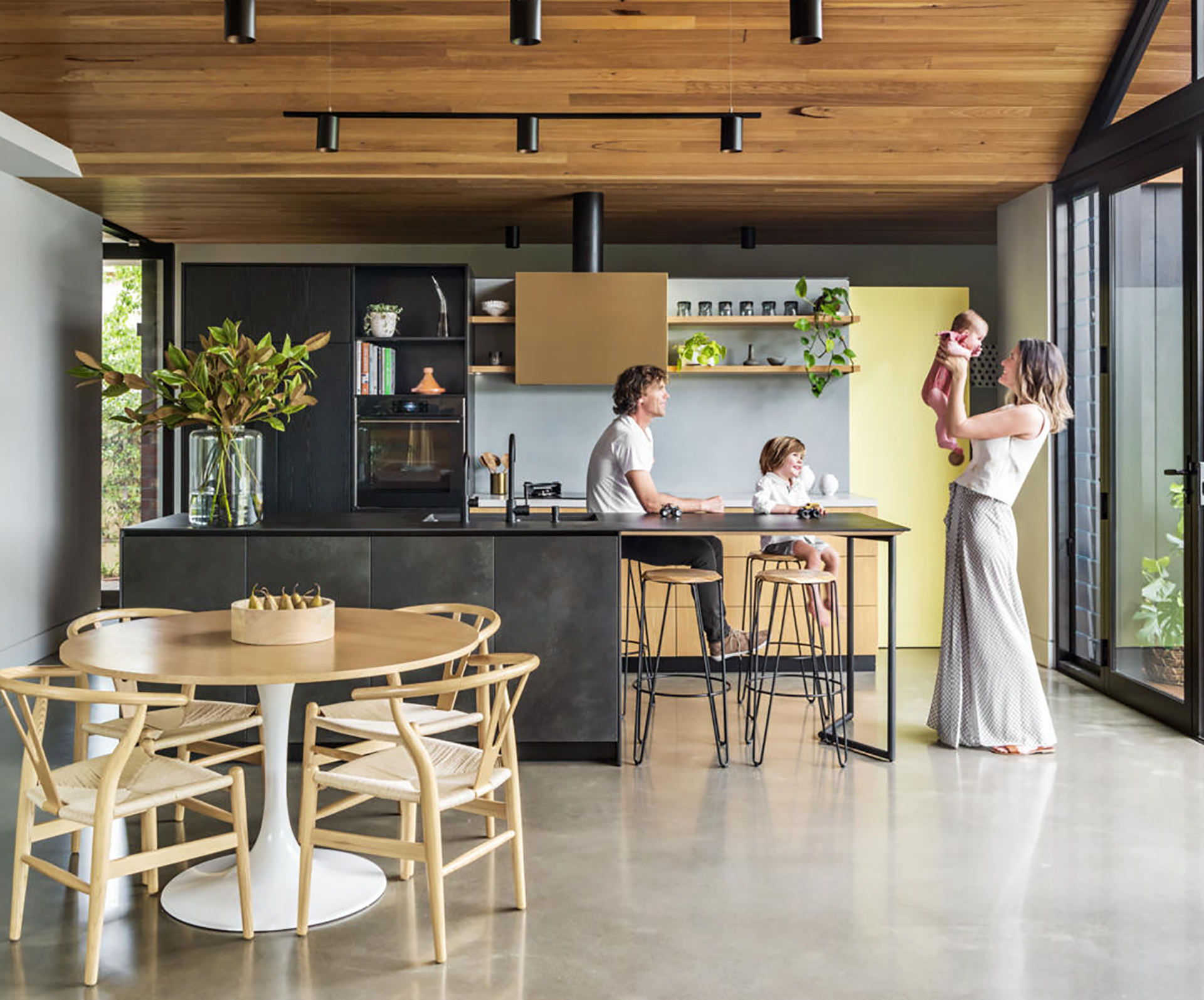 Adelaide home renovation planned around an old oak tree