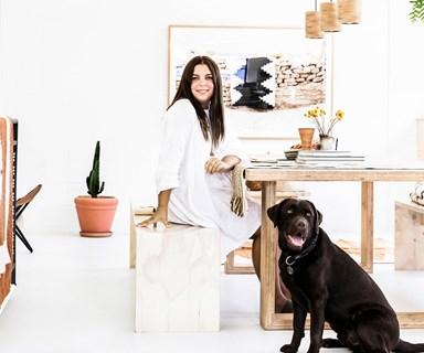 Real pets: Poncho the chocolate Labrador