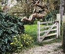 8 beautiful garden gates worth walking through