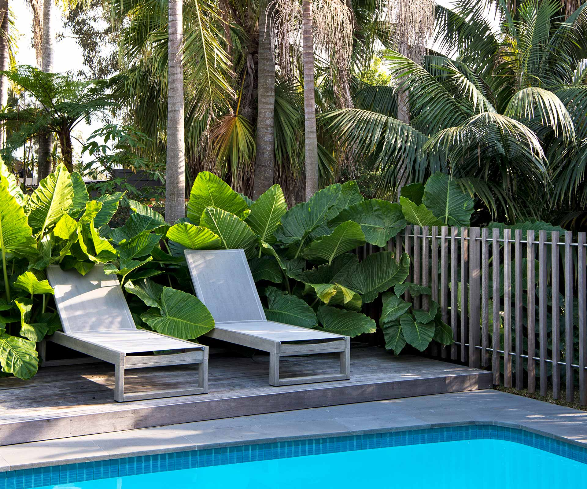 A Sydney backyard's relaxed resort-style makeover