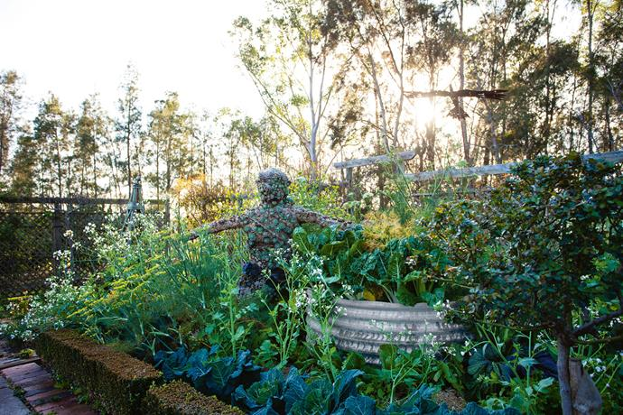 A wire scarecrow blends into the vegetable patch.