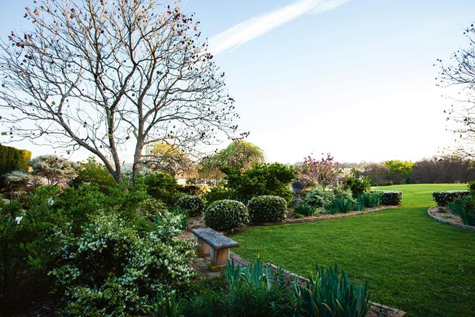 Clipped shrubs and hedges create a border for the lush green lawn.