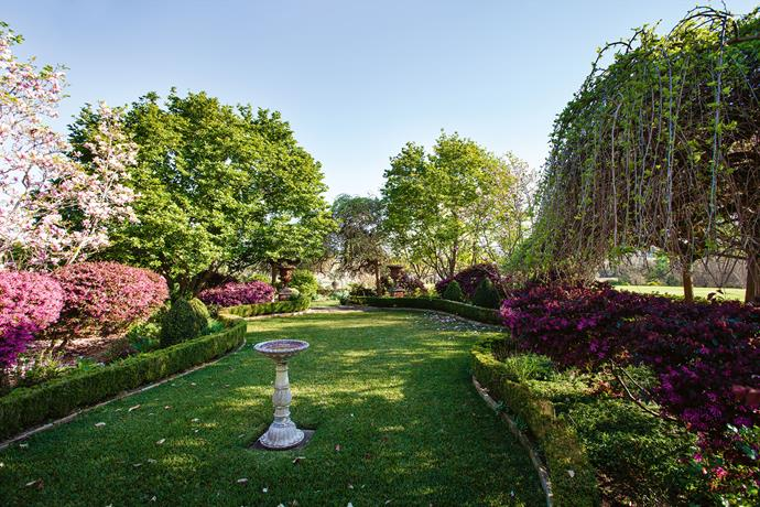Curved beds of trees and shrubs guide the view across the lawn.