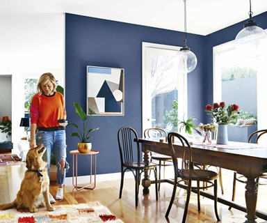 Bold and the beautiful: a colourful renovated Melbourne bungalow