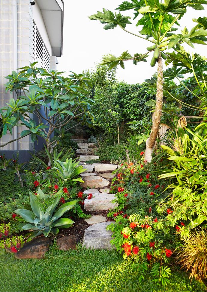 Because tropical gardens require a lot of love and attention, it's a good idea to ensure that any lawn space is kept to a minimum. *Photo: Alicia Taylor / bauersyndication.com.au*