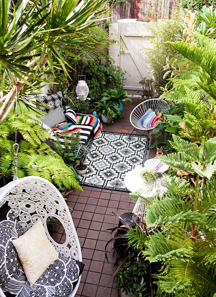 Even small spaces like inner-city courtyards or balconies can get a tropical makeover. Look out for potted varieties or dwarf species. *Photo: Chris Warnes / bauersyndication.com.au*