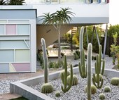 A Palm Springs-inspired garden with modernist touches