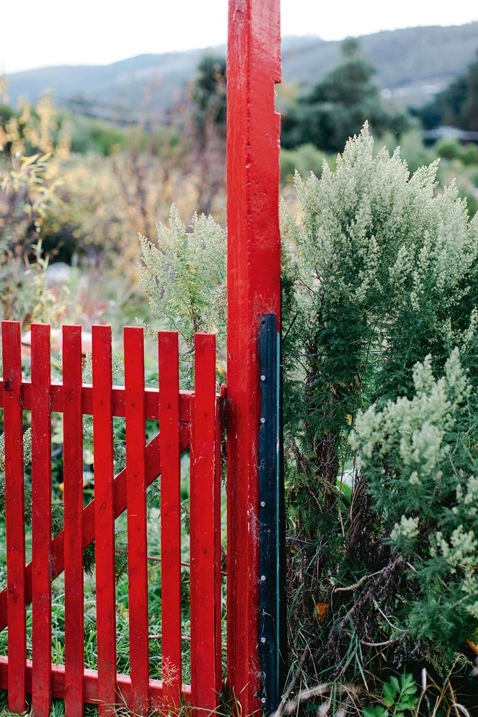 The couple had red paint custom-mixed to re-create the look of traditional Finnish red wooden houses. The red gate makes a wonderful contrast to the garden.