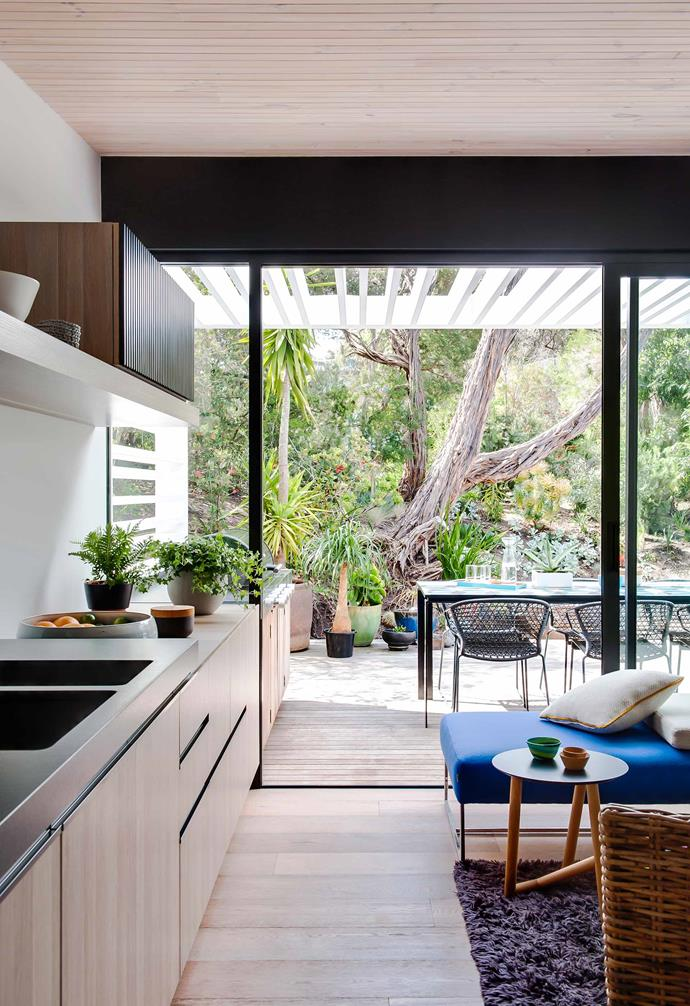 """**Ljiljana Gazevic 