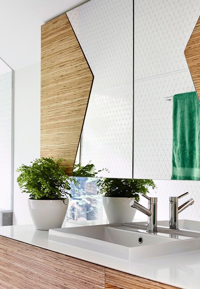 A potted maidenhair fern in a brightly lit bathroom.