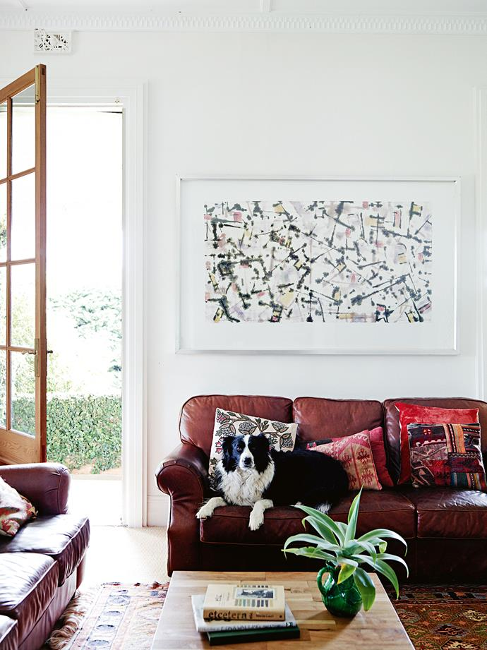 Horrie, the family's border collie, is in full possession of the sofa in the living room, beneath *Archaeological Landscape* by South Australian painter David Reid.