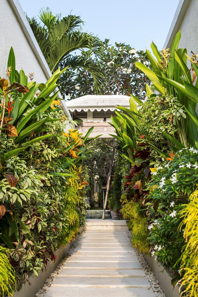 """""""When we bought the place, the garden was bare… there was just grass and a few plants,"""" Lena recalls. """"We've since added a cabana at one end of the pool, palms and a flower border."""""""
