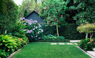 4 bee-friendly garden ideas