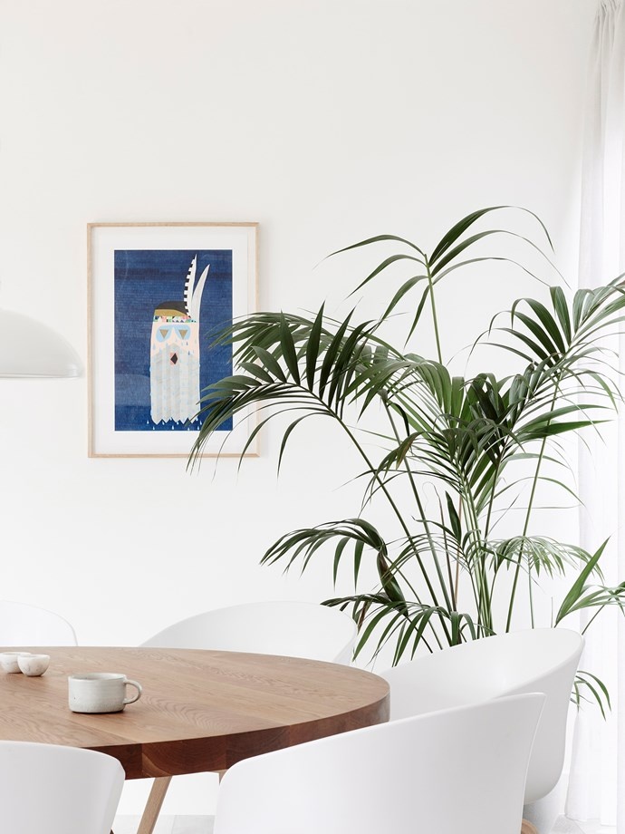 Bamboo palm (Chamaedorea seifrizii) is perfect for indoors as it grows well in low light conditions. They are also very good air purifiers. *Photo:* Eve Wilson / *bauersyndication.com.au*