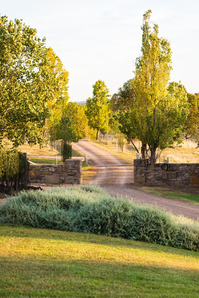 """We've kept the palette simple and subtle and just used lots of greys and silvers, which have picked up the bluey grey of the Cork oaks and put a bit of bronze in with some berberis,"" says [landscape designer Robert Boyle](http://www.boylelandscape.com.au/