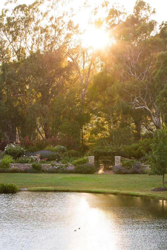 """Along the way Ian and Joan have made sure the [garden a magical place](https://www.homestolove.com.au/artists-magical-garden-in-the-nsw-blue-mountains-13869